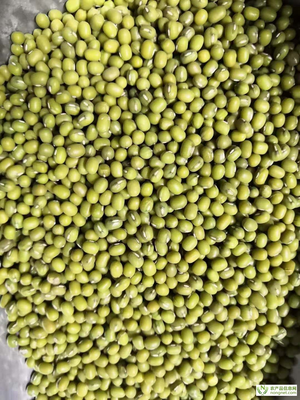 [供]缅甸 大产区 澳洲 乌兹 印尼 天山 东北 大粒 中粒 毛 油 绿豆 毛杂 箱货