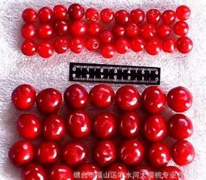 济宁出售板栗,核桃,樱桃,山楂等各种bwin china
