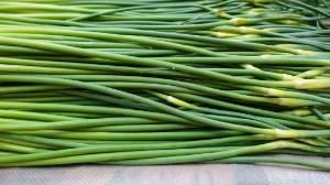 山东蒜薹批发价格蒜苔批发多少钱一斤了